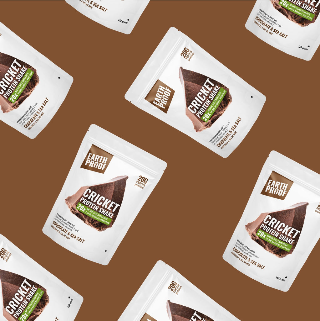 Boxing Day Chocolate Blow Out - Earthproof Protein