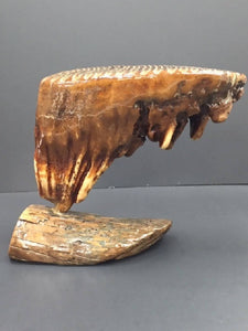 Mammoth Tooth Sculpture - Juvenile