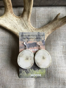 Caribou Antler Earrings