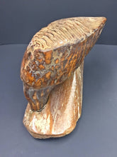 Load image into Gallery viewer, Woolly Mammoth Tooth - LARGE Adult