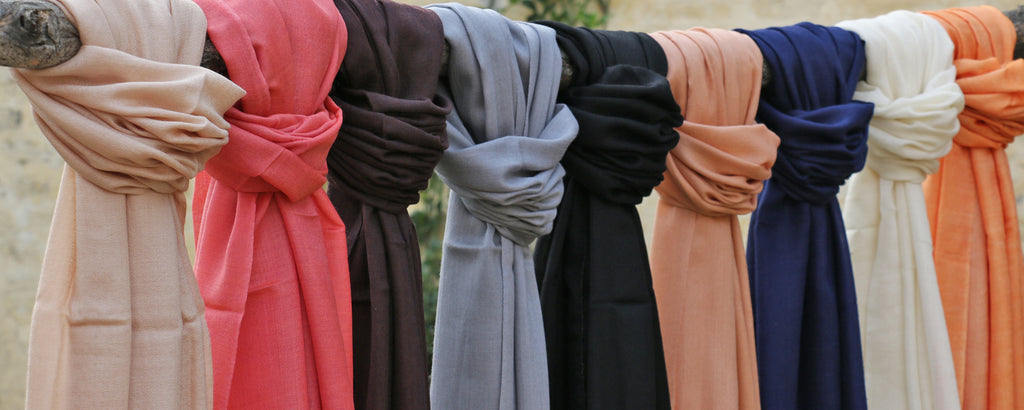 20 Ways to wear your Pashmina
