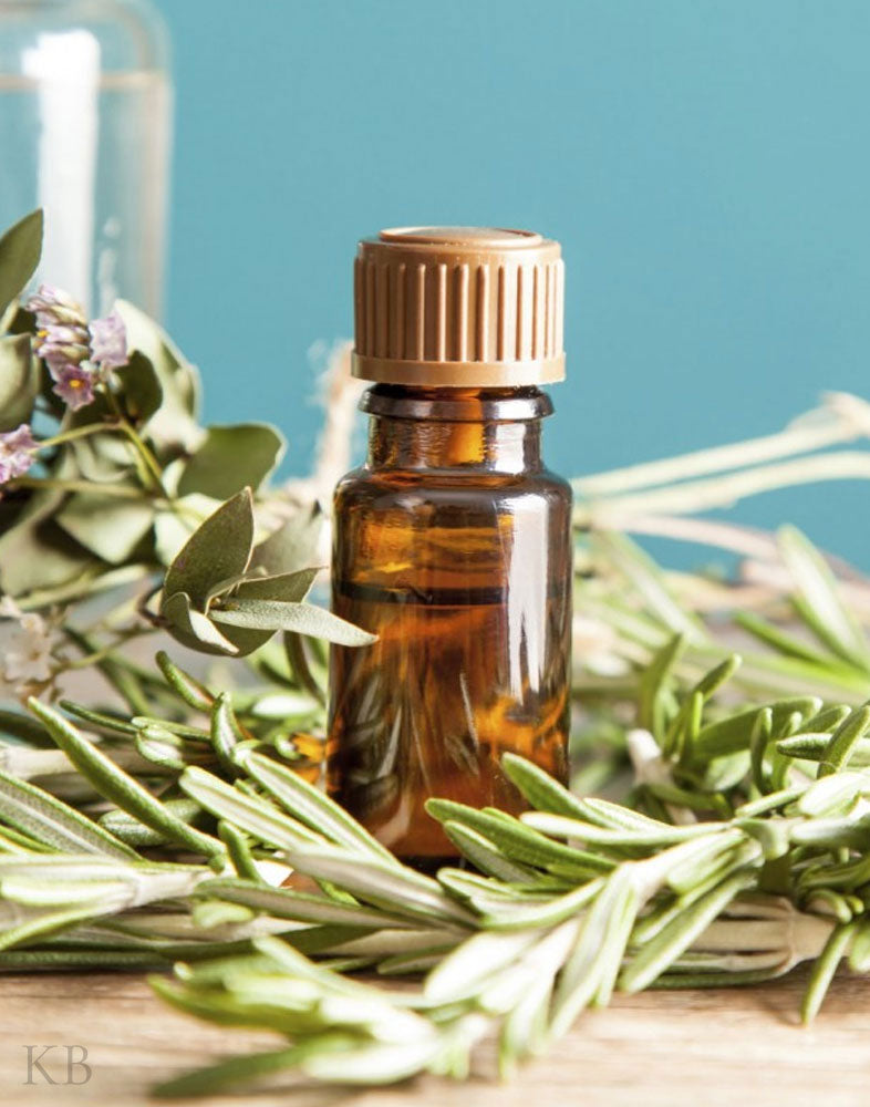 Aroma Pure Rosemary Essential Oil (Pair)