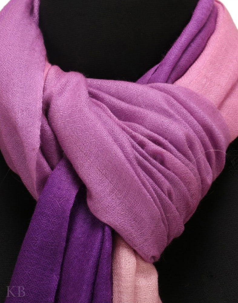 Color Tetrad Pure Pashmina Stole