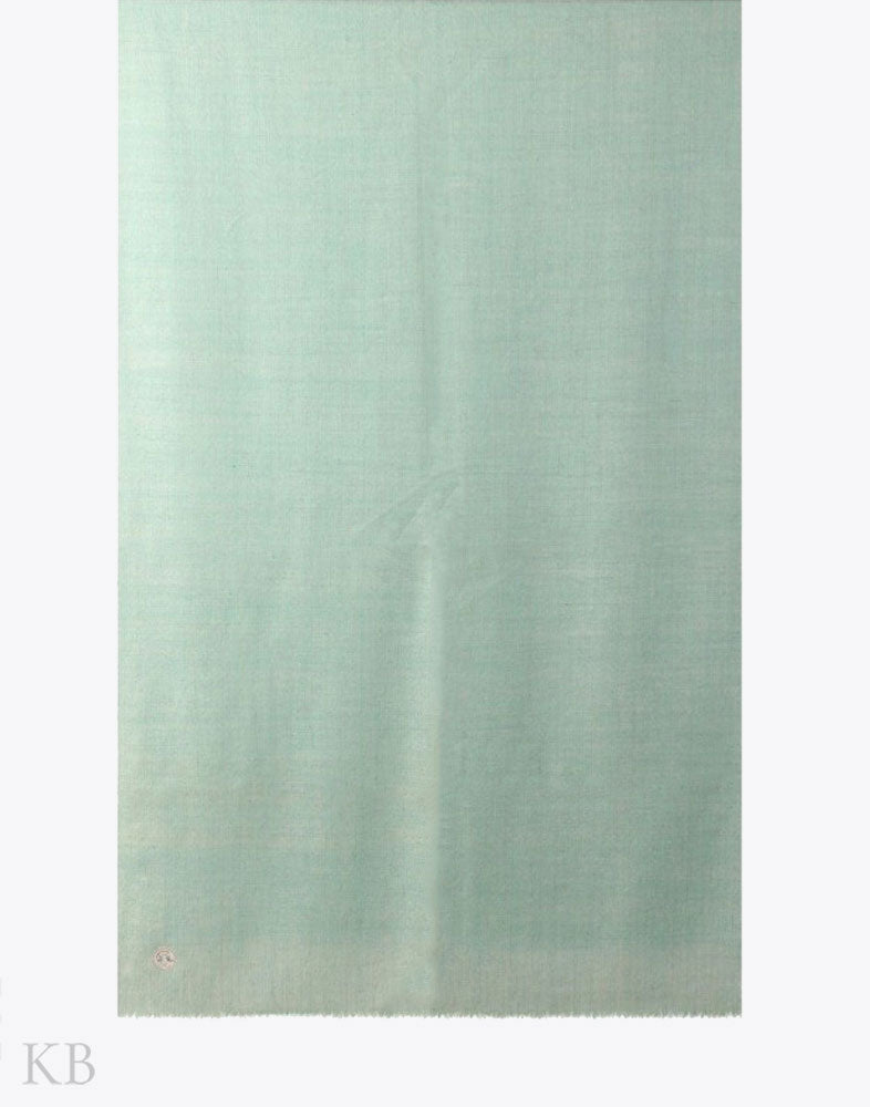 GI Certified Mint Green Solid Cashmere Pashmina Stole - Kashmir Box