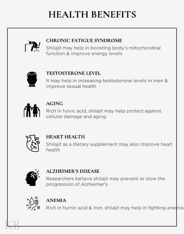 Nutrional Facts of Shilajit