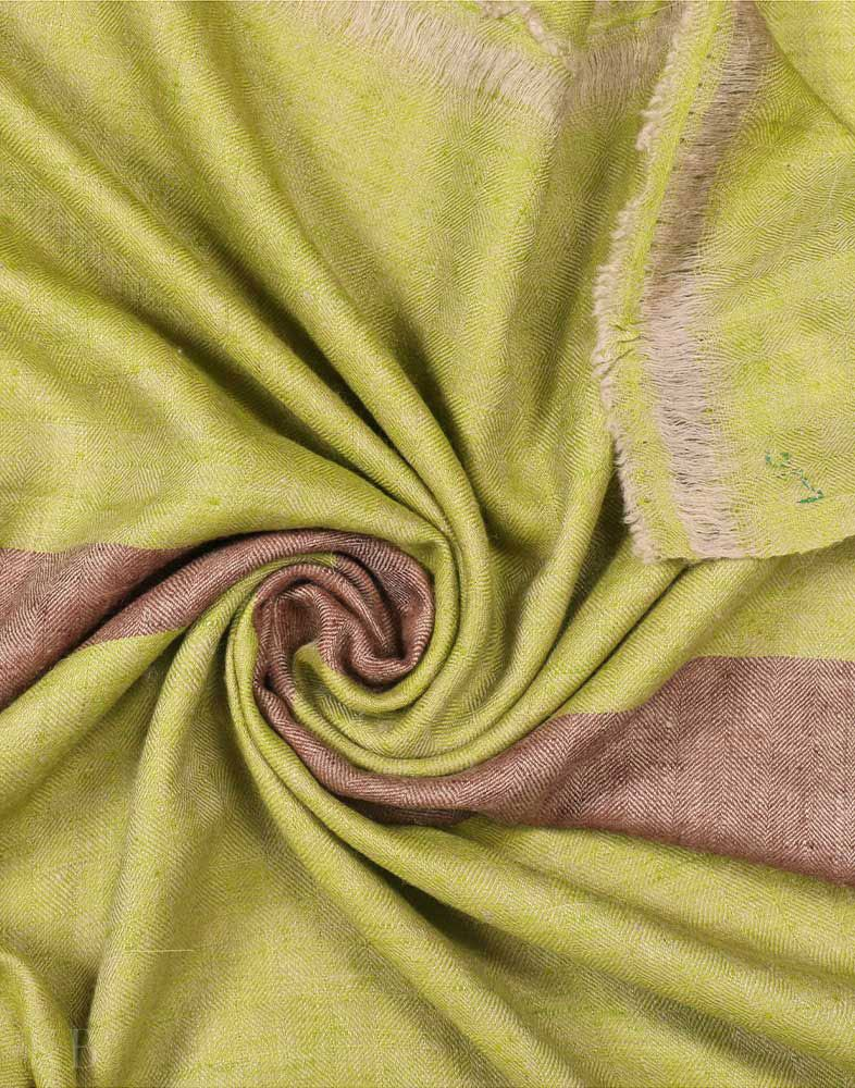 Fern Green Solid Cashmere Pashmina Stole