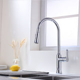 Single Handle High Arc Pull Out Kitchen Faucet | Single Level Stainless Steel Kitchen Sink Faucet with Pull Down Sprayer - F80300/BN