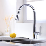 17.3-Inch Pull Out Kitchen Faucet | Single Handle High Arc Stainless Steel Kitchen Sink Faucet with Pull Down Sprayer - F80006/BN