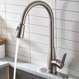 Single Handle High Arc Pull Out Kitchen Faucet | Single Level Stainless Steel Kitchen Sink Faucets with Pull Down Sprayer - F80099/BN