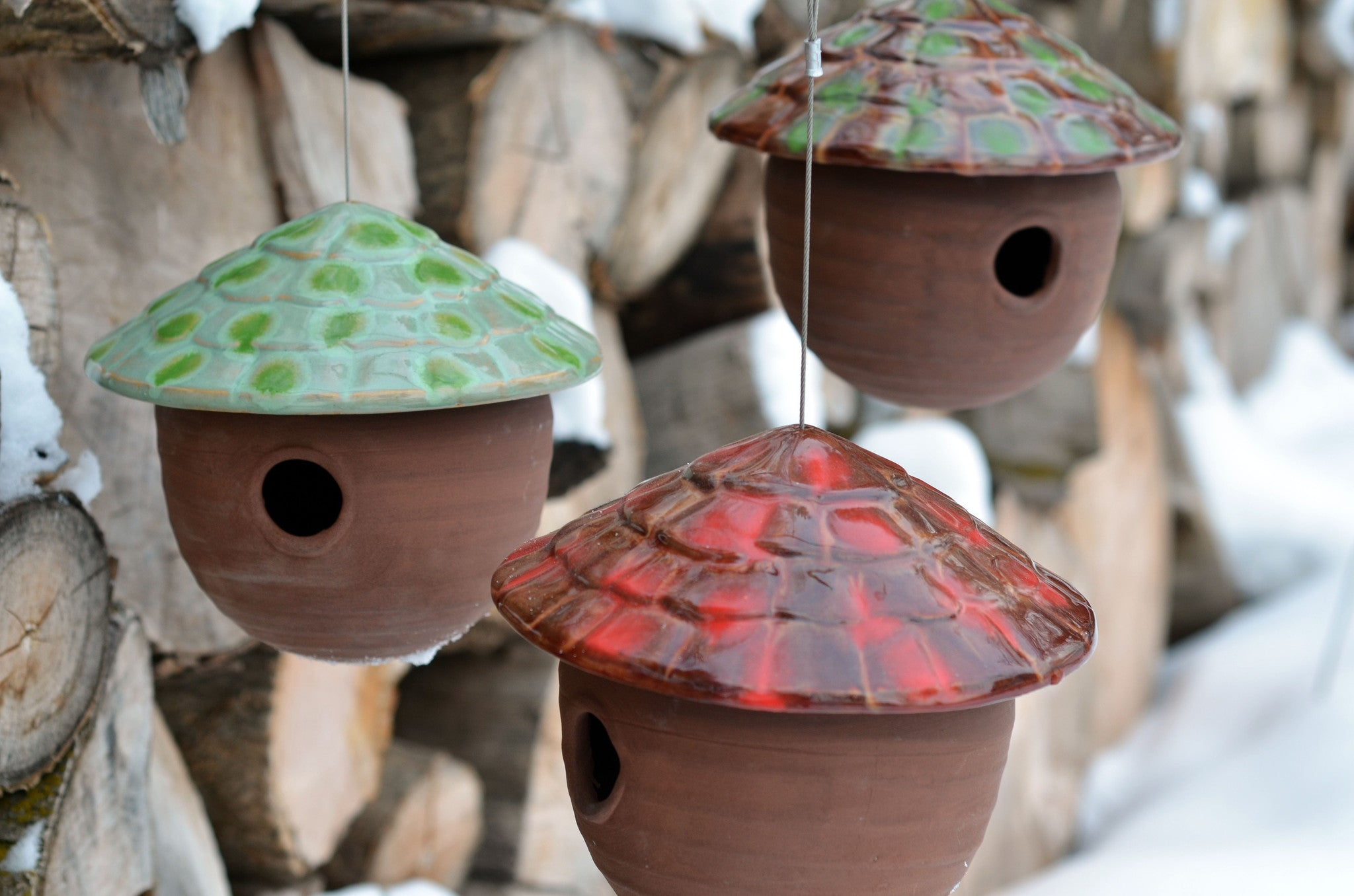 Gourd Birdhouse Mango Madness The Color Patch