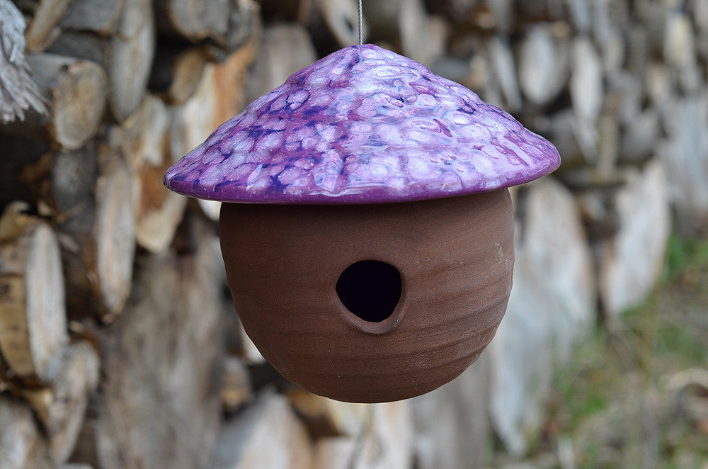 Gourd Birdhouse-Grape Goodness - Plum Scrumptious - 1