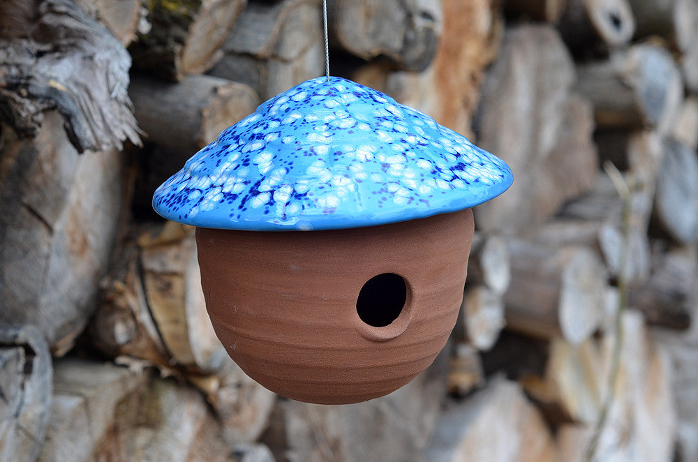 Gourd Birdhouse Frosty Blue The Color Patch
