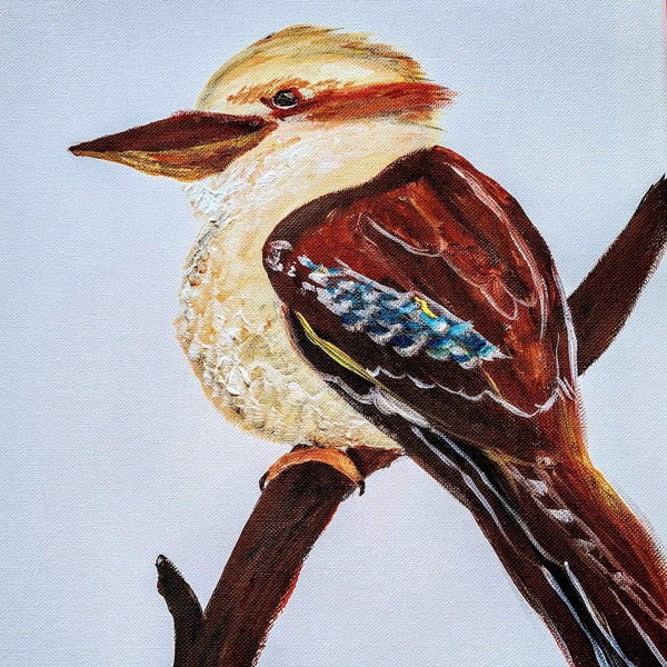 Kookaburra - Paddington Tavern (Jan 04 6.30pm)