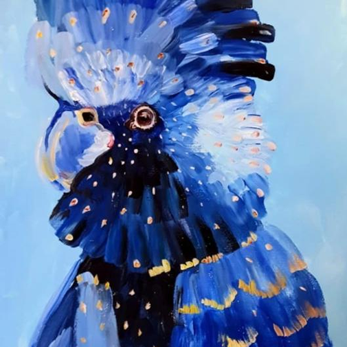 Blue Cockatoo
