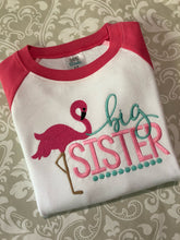 Pink Flamingo raglan sibling set