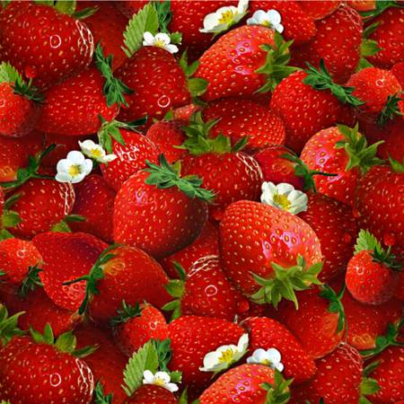 Berry Good Strawberries - Red