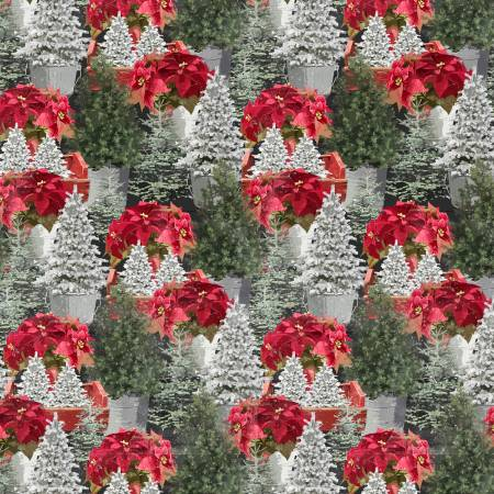Holiday Homestead Poinsettia - Multi