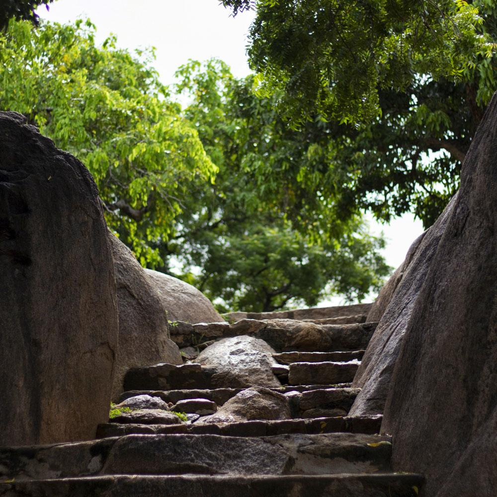 Staircase made out of stone going upwards towards lush green trees. A photograph from Mahabalipuram, Tamil Nadu
