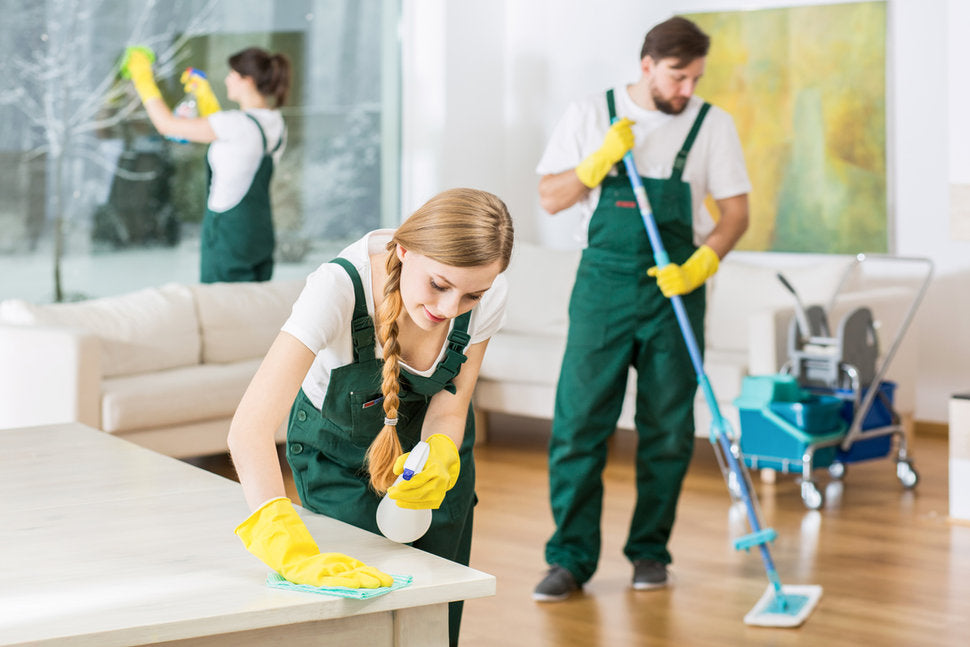 Five Routine Things Professional Cleaning Services Do Everyday