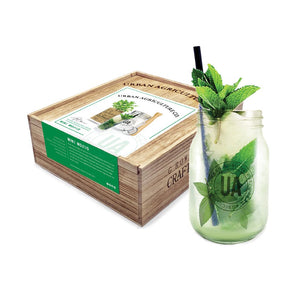 Grow Your Own Craft Cocktail - Mint Mojito