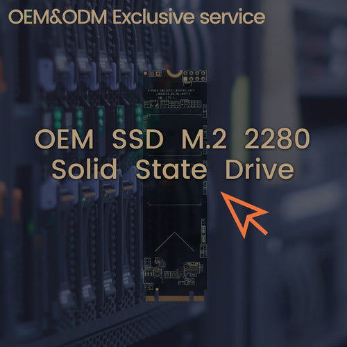 OEM SSD M.2 Internal Solid State Drive Laptop Hard Drive M.2  2280