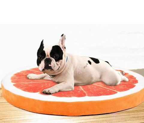 Pet Dog Soft Warm Fruit Bed