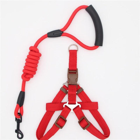 Image of Adjustable Dog Leash, Harness and Collar Set
