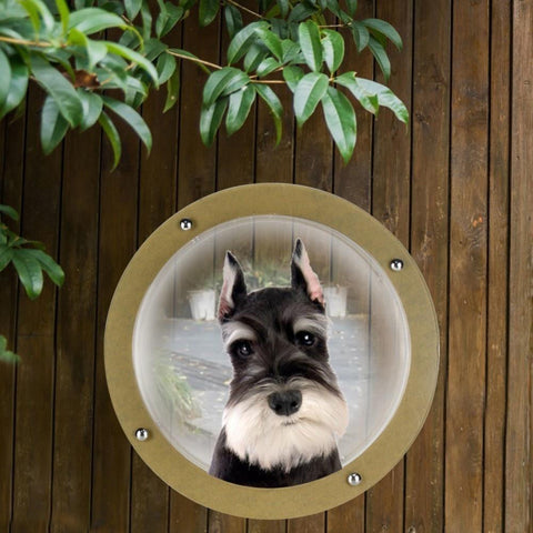 Image of Small Fence Window For Pets