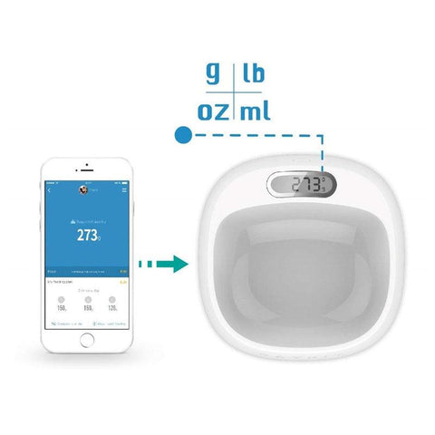 Image of Smart Anti-Bacterial Pet Feeding Bowl