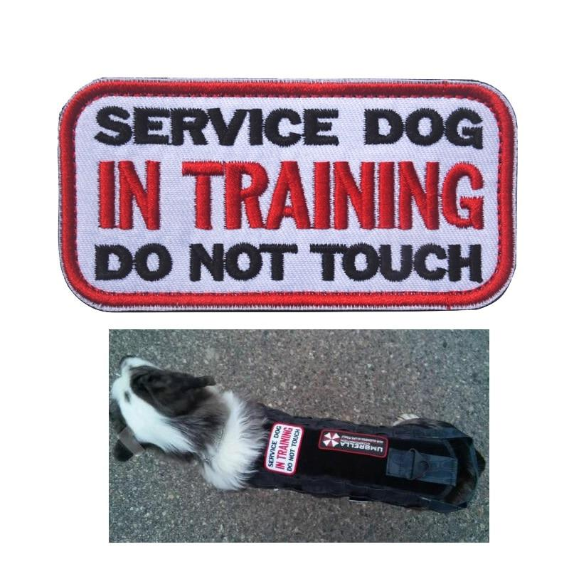 "Service Dog ""In Training"" Embroidered Patch"