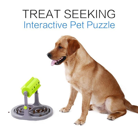 Interactive Slow Feeder For Dogs