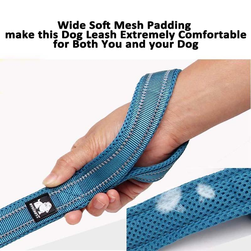 Designer Reflective Dog Leash By Truelove