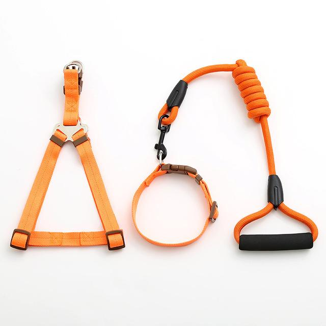 Adjustable Dog Leash, Harness and Collar Set