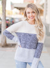 Color Block Netted Texture Pullover Sweater(LC270053-11-3)