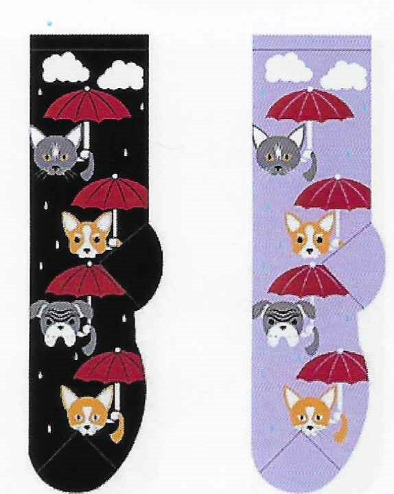 Raining Cats & Dogs Socks FC-113