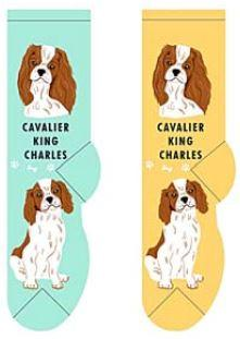 Cavalier King Charles Canine Collection Socks  FCC-08