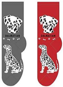 Dalmatian Canine Collection Socks  FCC-12