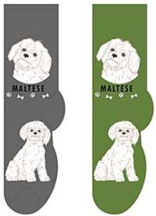 Maltese Canine Collection Socks  FCC-25