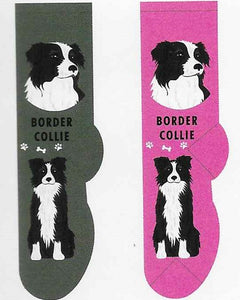 Border Collie Socks   FCC-29