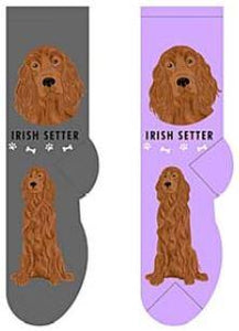 Irish Setter Canine Collection Socks  FCC-45