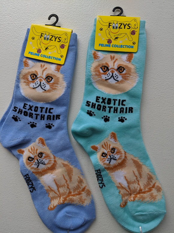Exotic Shorthair Feline Collection Socks   FFC-09