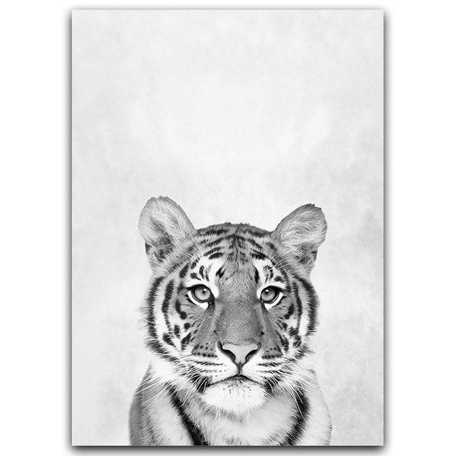 Modern Black & White Animals