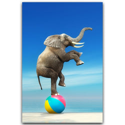 Fun Beach Elephant