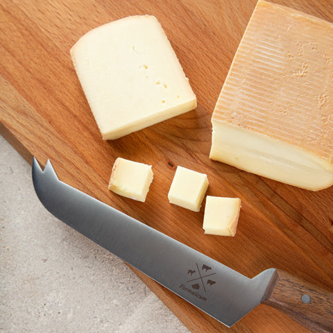 Professional Tasting Cheese Knife