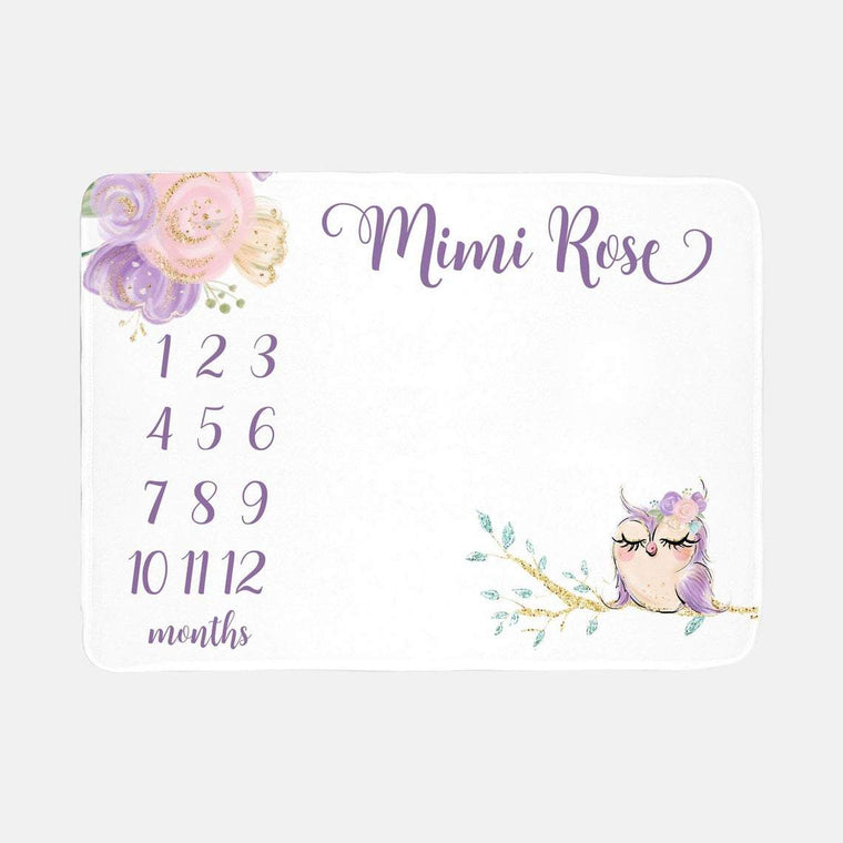 Personalized Baby Girl Miletone Blankets, Owl Baby Girl Minky Blankets, Personalized Name Blankets, Baby Shower Gift