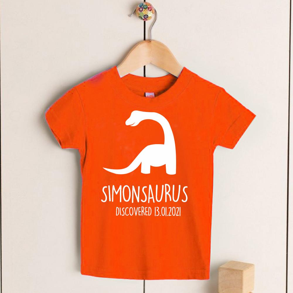 Personalised Diplodocus Kids Dinosaur T-Shirt, Birthday Gift for Your Children