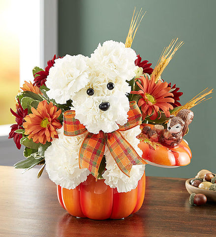 a-DOG-able® for Fall (Pumpkin vase sold out)
