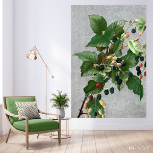 Blackberries Colossal Art Print