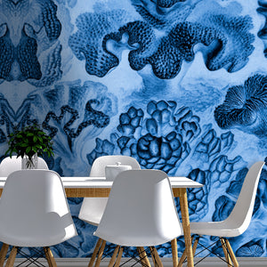 Wall Mural lifestyle image of Coral Illustration in Blue color, printed on wallpaper. Custom options available.