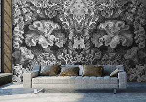 Wall Mural lifestyle image of Coral Illustration in Black & White color, printed on wallpaper. Custom options available.